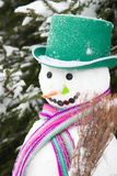 Winter - snowman in a snowy landscape with a hat Stock Image