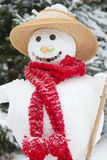 Winter - snowman in a snowy landscape with a hat Stock Photos