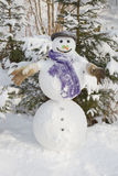 Winter - snowman in a snowy landscape with a hat Royalty Free Stock Photo