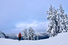 Winter snowshoe hiking in mountains. Active outdoor man hikes to the top of a mountain range at sunset. Crater Lake National Park. Portland. Oregon. United Royalty Free Stock Images