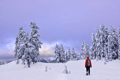 Winter snowshoe hiking in mountains. Active outdoorsman hikes to the top of a mountain range at sunset. Crater Lake National Park. Portland. Oregon. United Royalty Free Stock Photos