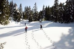 Winter snowshoeing Stockbilder