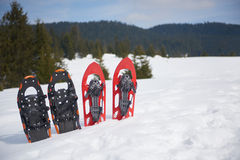 Winter snowshoes Royalty Free Stock Photo