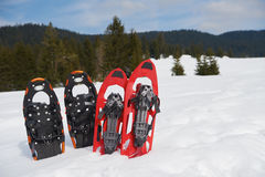 Winter snowshoes Stock Image