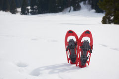 Winter snowshoes Royalty Free Stock Images