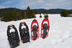 Winter snowshoes Stock Images