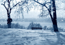 Winter snowstorm. Winter nature in Russia, Kostroma city, snowstorm Royalty Free Stock Photos
