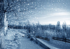 Winter snowstorm Royalty Free Stock Photography