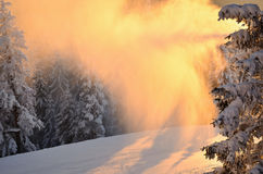Winter snowstorm at sunset Royalty Free Stock Photos