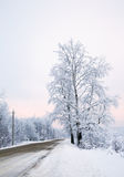 Winter, snowy day on the road Royalty Free Stock Image