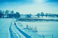 Winter snowy field Stock Photos