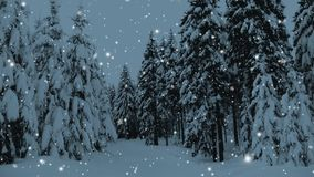 Winter snowy forest with snow covered trees, falling snow and stars. Christmas, new year slow motion animation, HD 1080. Winter snowy forest with snow covered stock video footage