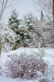 Winter snowy garden view Royalty Free Stock Photography