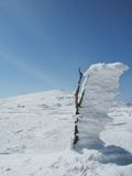 Winter snowy landscape stock photo