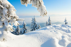 Winter snowy landscape Stock Images