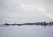Winter snowy landscape. Background of forest and sky Royalty Free Stock Photography