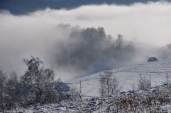 Winter snowy landscape. In Bran - Moeciu, Romania Royalty Free Stock Photos