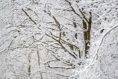 Winter landscape. Winter snowy landscape in Europe climate stock photo