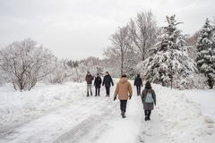 Winter snowy landscape in Montreal, Quebec stock photography
