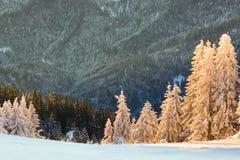 Winter snowy landscape, Postavaru Brasov. Mountain Landscape royalty free stock images