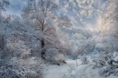 Winter snowy landscape at sunny day stock image