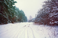 Winter snowy road Royalty Free Stock Image
