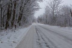 Winter snowy road Royalty Free Stock Photo