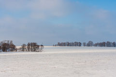 Winter snowy rural landscape with meadows and forest. Winter rural landscape with meadows and forest in Russia Stock Photography