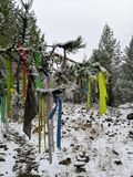 Winter snowy tree of wishes with the attached colored ribbons shaman tree. Winter tree in the snow with colored ribbons attached to it with colored ribbons stock photos