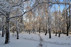 Winter is snowy in Ukraine. At us only such winter, snow. You can go sledging and skiing. Snow covered all the fir trees, and above the blue sky. Beauty stock image