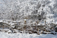 Winter. Snowy winter in a Ukrainian village Royalty Free Stock Image