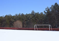 Winter Soccer with Snow. Soccer or football field with snow and a goal. With trees and blue sky Royalty Free Stock Image