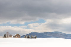 Winter Solace Royalty Free Stock Photography