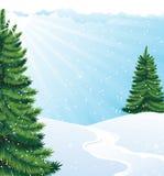 Winter solar landscape Stock Photos