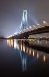Winter South bridge in Kiev. Royalty Free Stock Photos