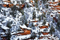 Winter, South Rim, Grand Canyon National Park, Arizona Stock Images