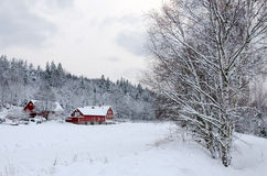 Winter in southern Sweden Royalty Free Stock Photo
