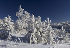 Winter in southern ural Royalty Free Stock Images