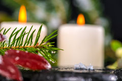 Winter spa concept of evergreen branches with drops, candles on Stock Photo