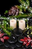 Winter spa concept rode bladeren met dalingen, sneeuw, altijdgroene bustehouder Stock Afbeeldingen