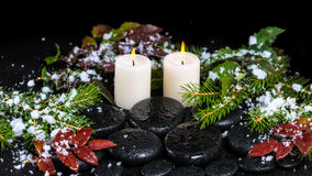 Winter spa concept of zen basalt stones, evergreen branches, red Royalty Free Stock Photos