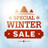 Winter special sale poster Royalty Free Stock Photography