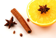 Winter spice Stock Images