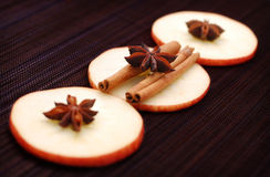 Winter spice decoration Stock Image