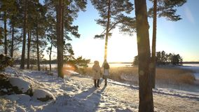 Winter sport for all ages - nordic walking Active people hiking in snowy forest stock video