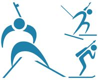 Winter sport - Biathlon icons set Royalty Free Stock Photo