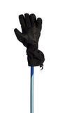 Winter sport gloves on ski pole Stock Image