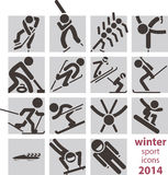 Winter sport icons Royalty Free Stock Image