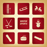 Winter sport pictograms Royalty Free Stock Photos