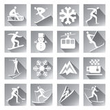 Winter sport web icons. Stock Images
